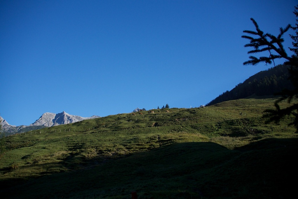 Selbhorn-Schoenfelspitze- 002