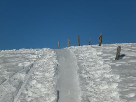 Loosbühel (1.350m)