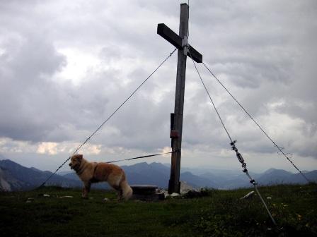 Hoher Zinken (1.764m)