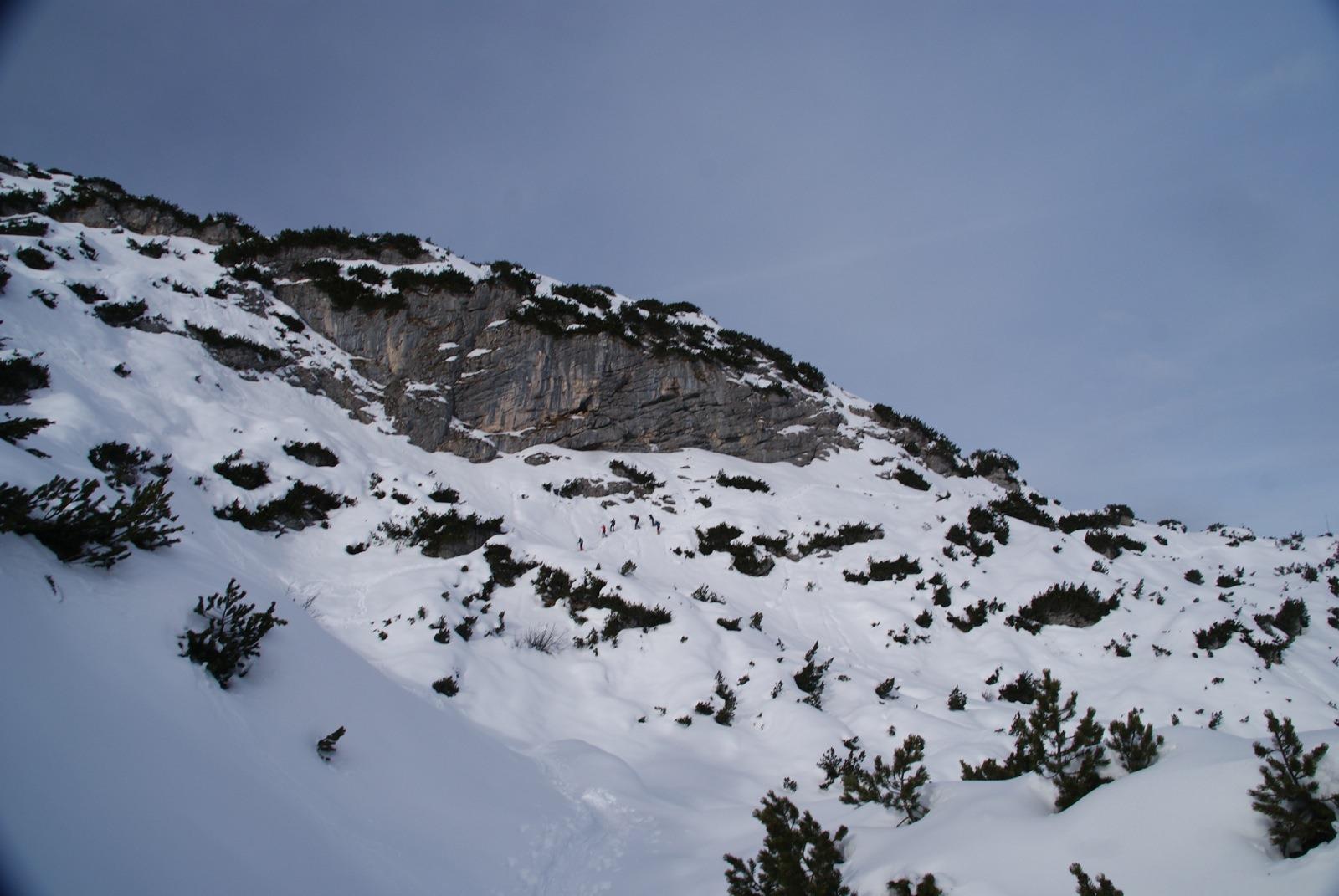 Dachtsein, 07.01.2011 - 021