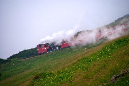 Schafberg 25.06.2011 - 071