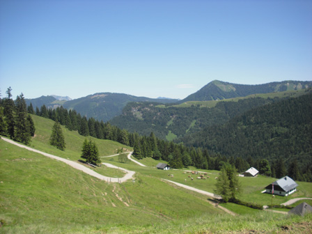ladenbergalm